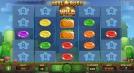 Reel Rush Slot